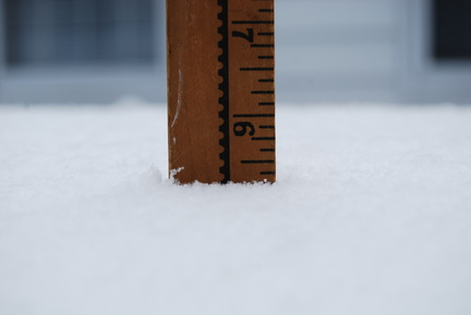 5.5 Inches