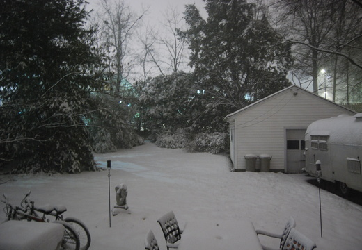 Backyard Snow
