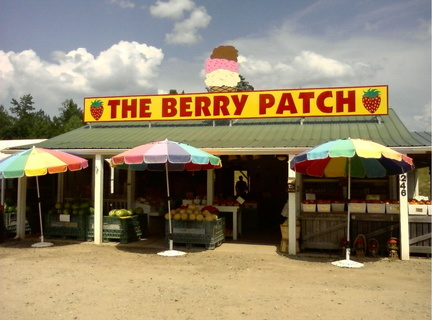 The Berry Patch -- 7/23/09