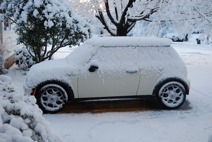 Mini in Snow