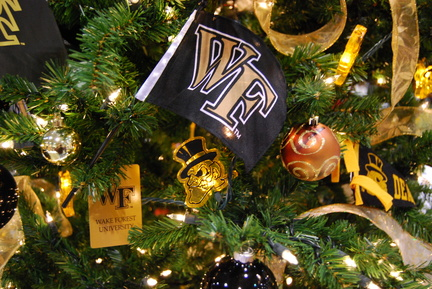 Wake Forest Tree