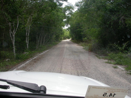 The Calakmul Road