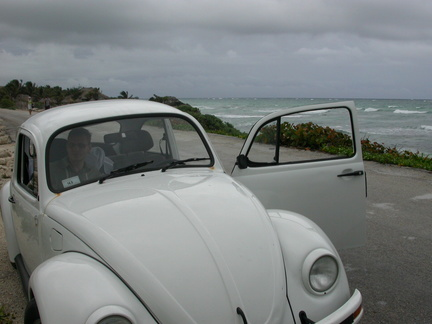 Brian in the Beetle