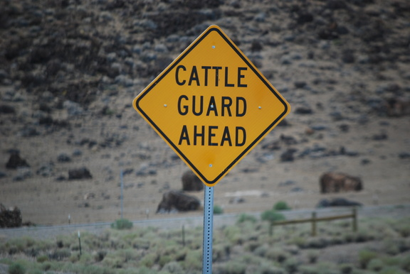 Cattle Guard Ahead