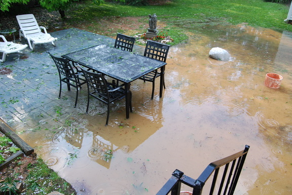 Flooded Yard